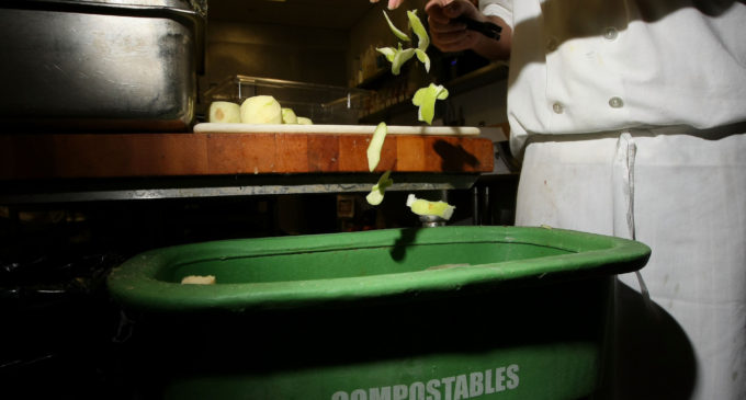 UNT to launch food waste recovery program