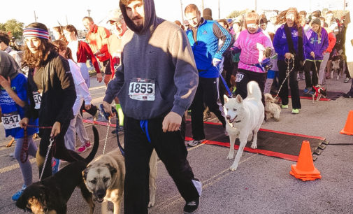 Runners raise money for local pups