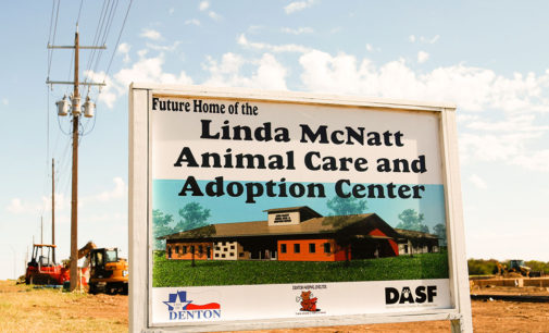 New shelter brings extra space and hope for animals