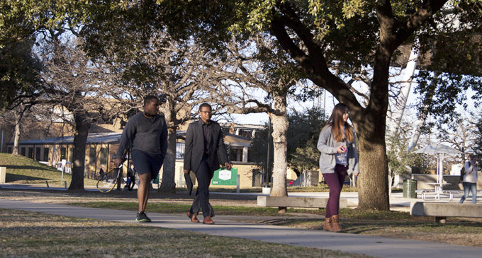 UNT becomes Tree Campus USA-certified for its sixth year in a row