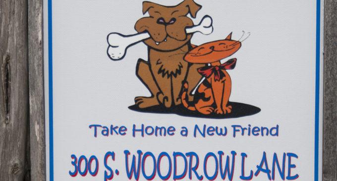 Hot Dog Extravaganza at Willis helps Denton Animal Shelter