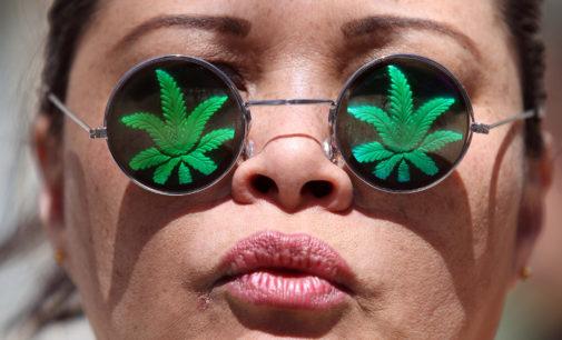 Marijuana Explainer: caught on campus