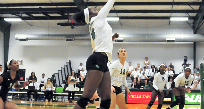 Volleyball looks to correct struggles on the road