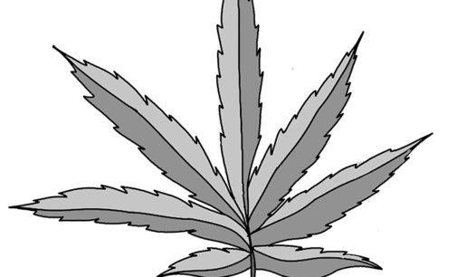 Group advocates drug policy reform