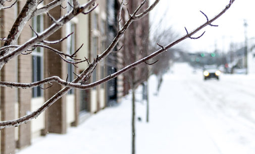 Icepocalypse 2014: will it be the next big chill?
