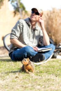 16_squirrel_web2