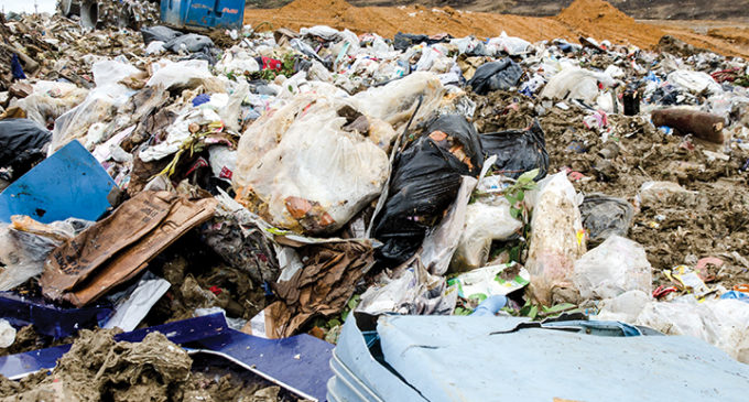 Landfill, campus facilities promote sustainability