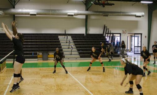 Dillard providing more than dominating play to volleyball program