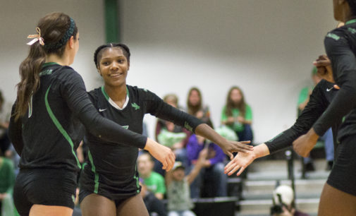 Volleyball defeats Southern Miss in straight sets