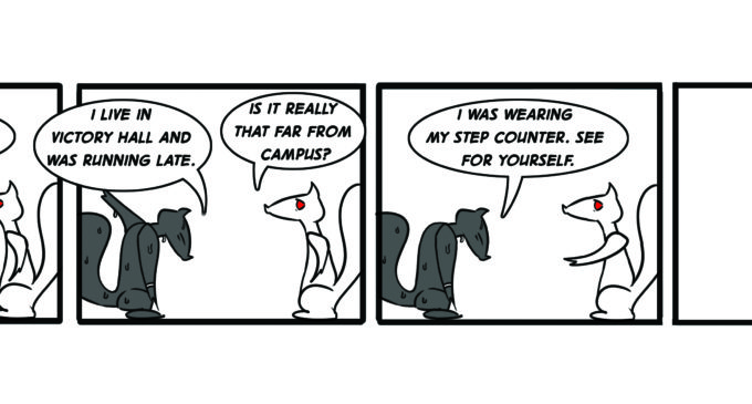 Squirrels On Campus: Step Counting