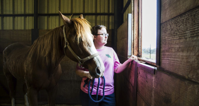 Familial values propel UNT equestrian team