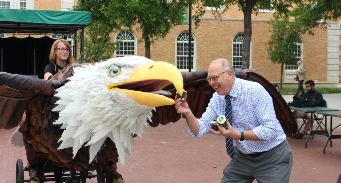Giant eagle bike-thing from Austin's Bike Zoo