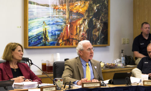 City Council lays out plans for gas plants, approves park use for electricity, plans karaoke