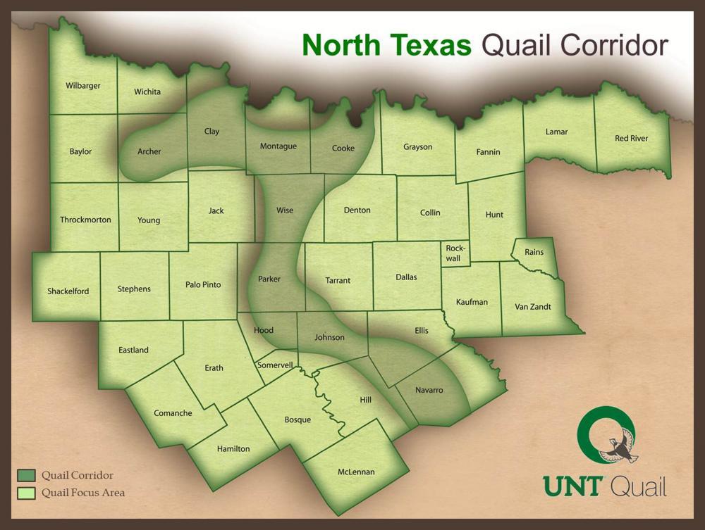North Texas Quail Corridor. UNT | Courtesy