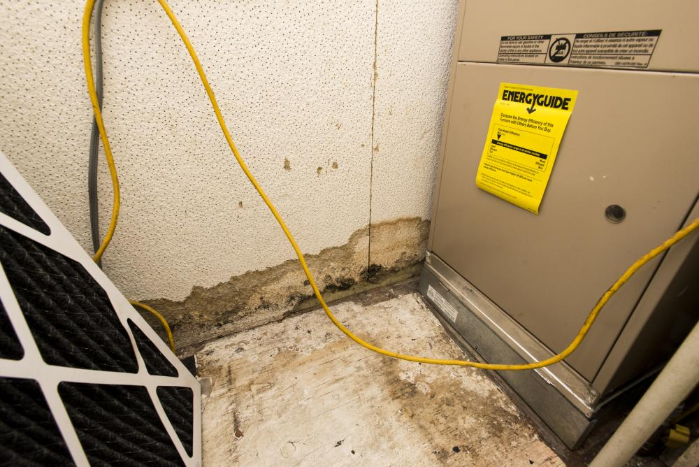 Mold grows behind an AC unit in a Scott Brown Properties home. Renter asked to remain anonymous. Hannah Breland | Staff Photographer