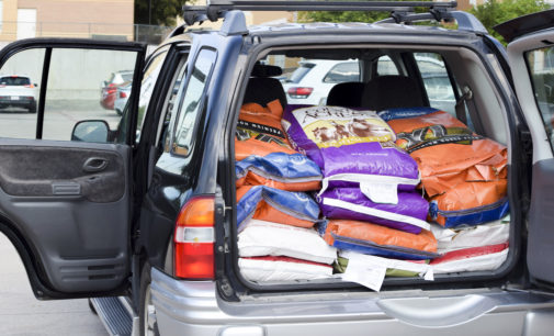 Denton and UNT come together to aid in Hurricane Harvey relief