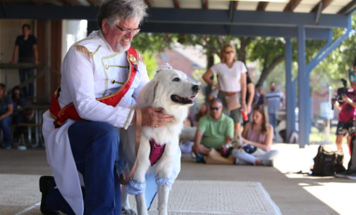 Denton celebrates furry friends and their families at annual event
