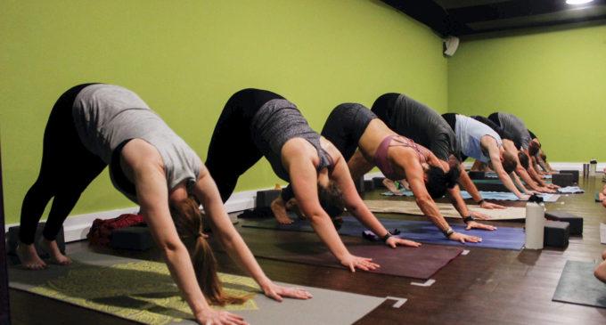 Denton yoga studio hosts classes with unconventional twists