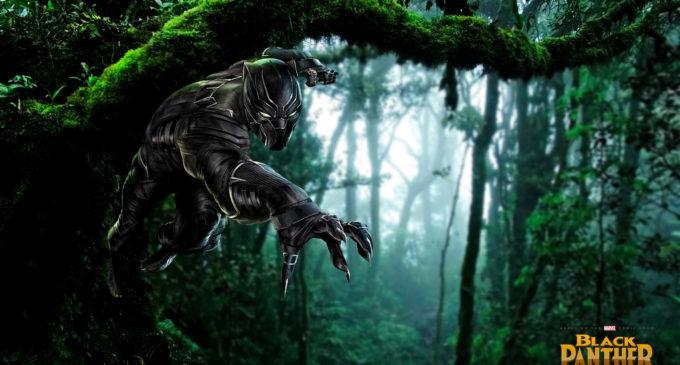 'Black Panther:' Wakanda, forever