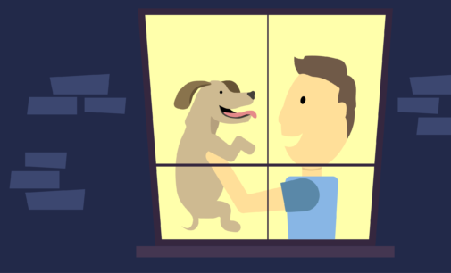 This & That: Dogs are better