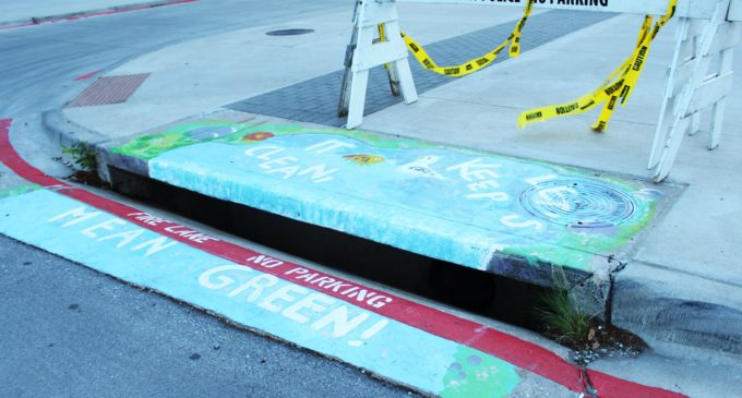 First of three storm drain murals painted on campus to promote sustainability