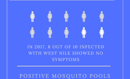 Denton's mosquito response plan looks to decrease West Nile and inform the public on prevention tactics