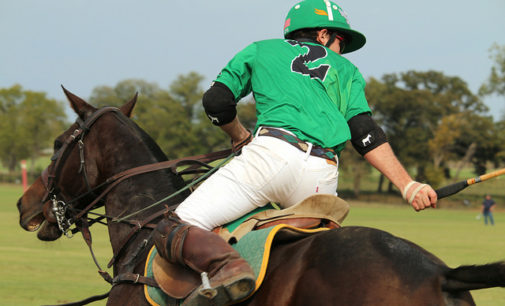 UNT polo club looks for success in first year of competition