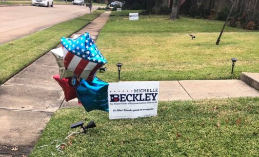 Local political groups condemn Michelle Beckley's alleged racist comments