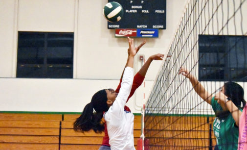 UNT women's volleyball club looks forward to hopeful season