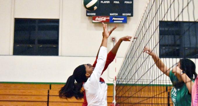 UNT women's volleyball club looks forward to hopeful season