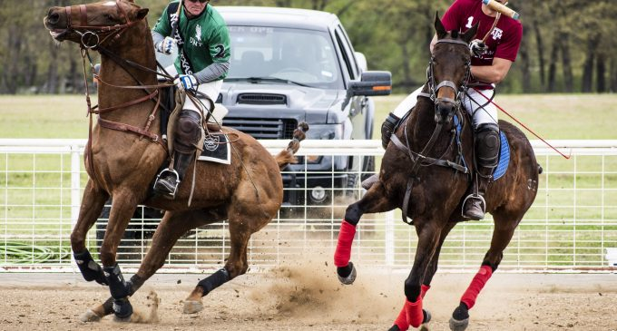 Polo club takes 9-point victory in pre-tournament matchup against Texas A&M