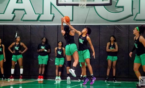 Introducing women's basketball's six new players