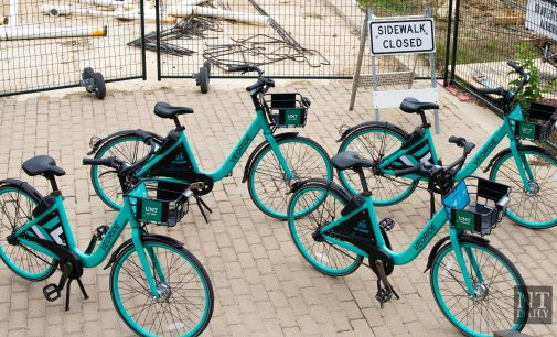 UNT Transportation Services rounds up astray VeoRide bikes with new bike corrals