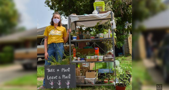 'Take a Plant, Leave a Plant Denton' group creates community among plant lovers