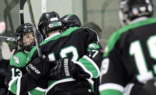 North Texas club hockey cancels 2020-21 season