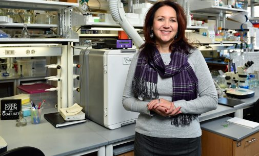 New College of Science dean hopes to recruit more students to STEM